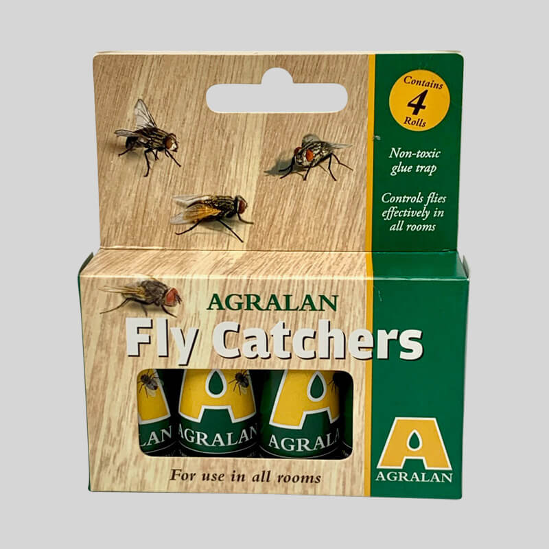Sticky Fly Catchers In Box