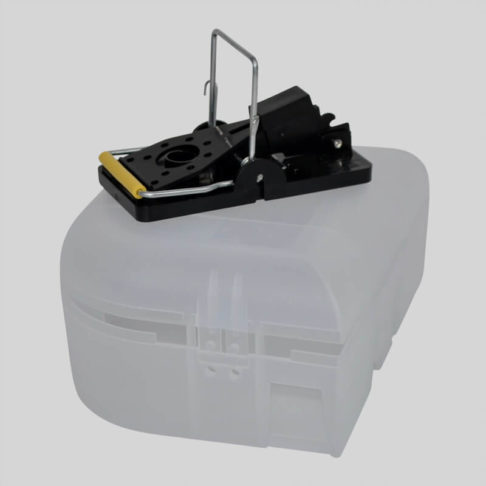 Trap E Mouse Box With Mouse Trap On Top