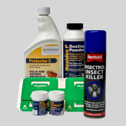 All in one kit to control bed bugs