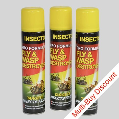 Insecto Fly & Wasp Destroyer Spray