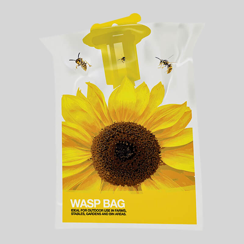 Trap to attract and trap wasps