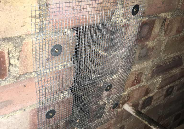 mesh placed over entry point to prevent roof rats
